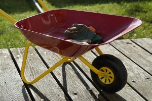 red wheelbarrow with a pair of gloves inside of it