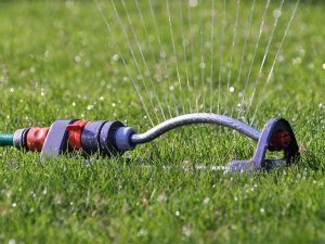 water sprinkler watering the lawn