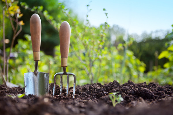 2015 Twin Cities Gardening & Landscape Classes