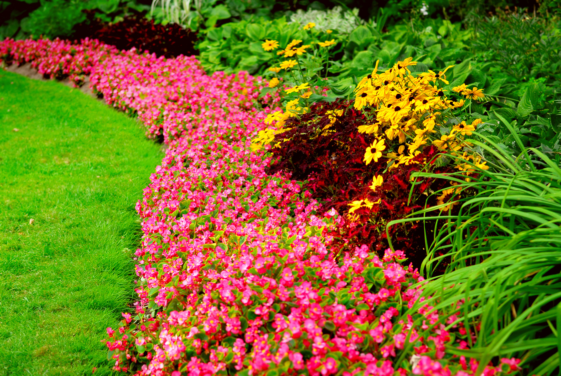 14 Top Notch Landscaping And Gardening Blogs
