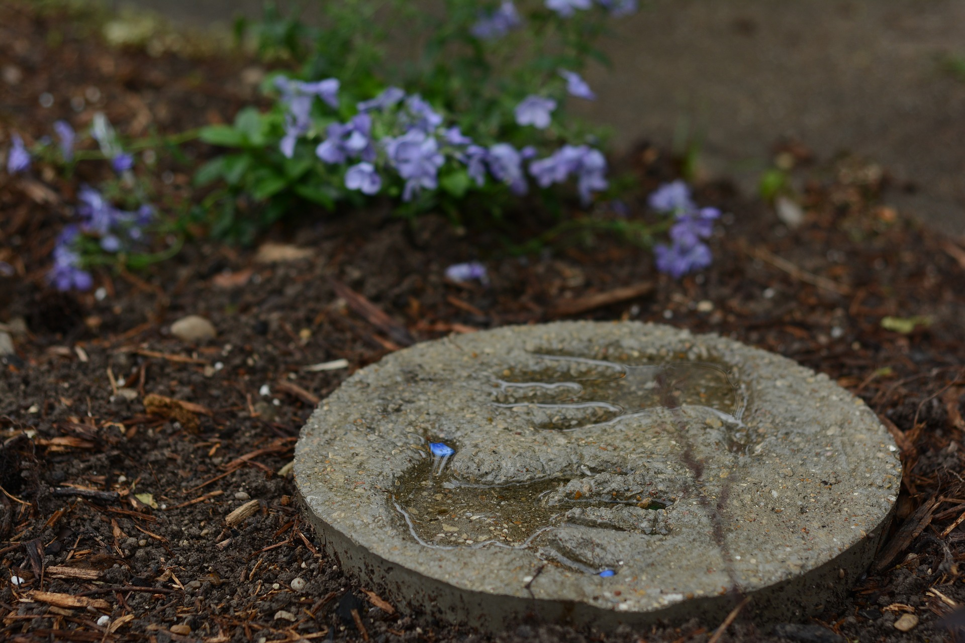 Handprints molded into a stepping stone in a garden.