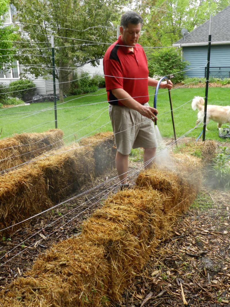 9 awesome diy backyard ideas mn gardening blog for Straw bale gardening techniques