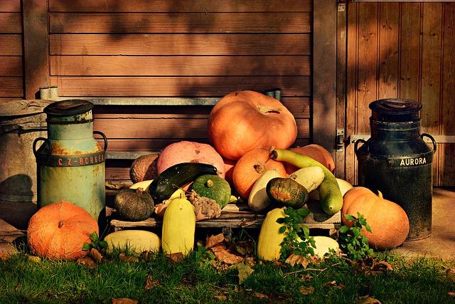 pumpkins halloween decoration