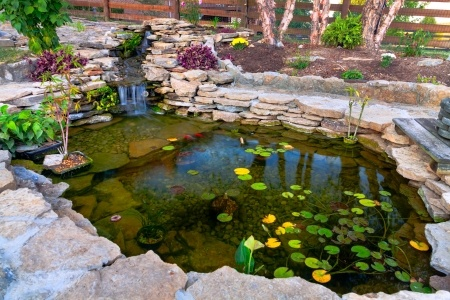 How to build a koi pond frador for Pool to koi pond conversion