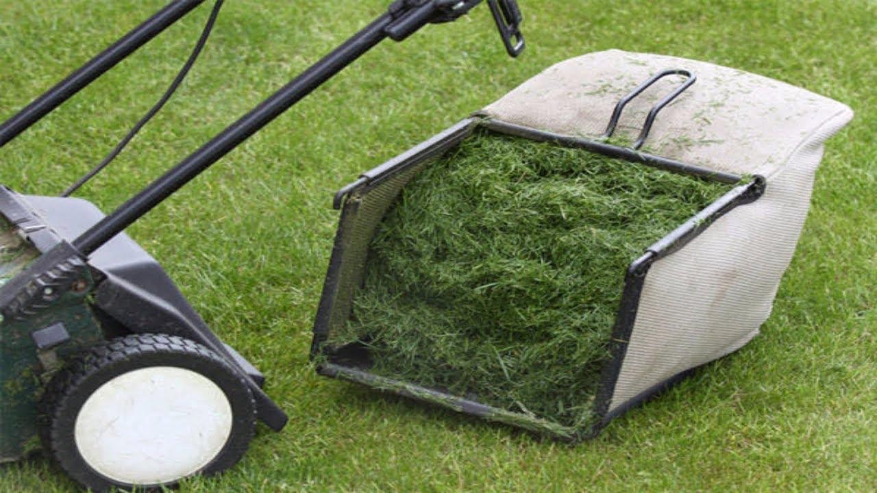 Best rake for grass clippings hj 5500 pallet jack